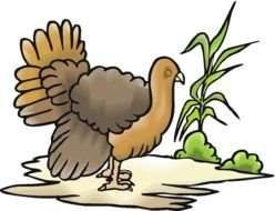 brown turkey as a graphic image