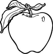 coloring page with an apple