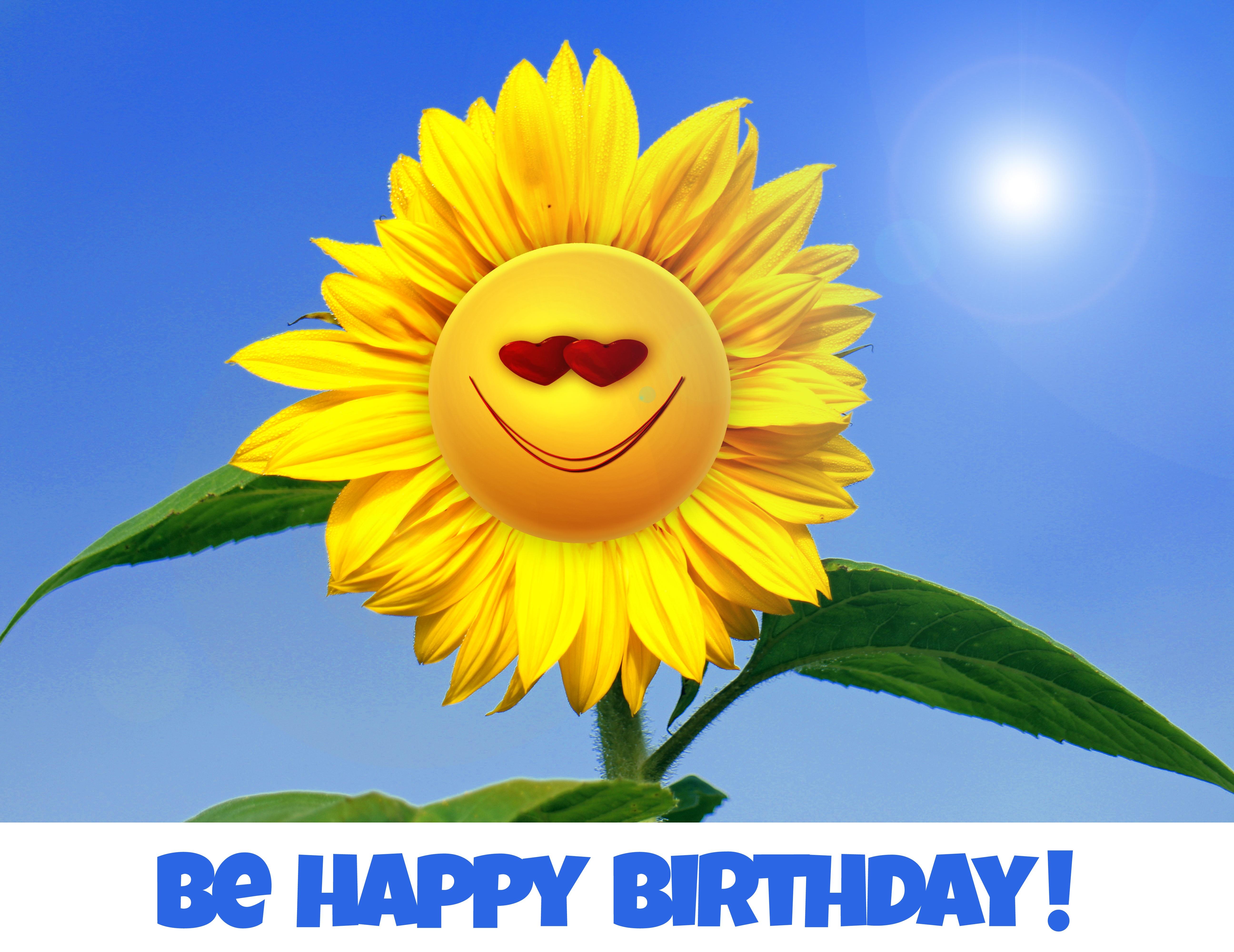 это картинки с днем рождения солнце с цветами тебя будет хорошее
