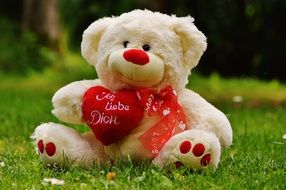 teddy bear gift on valentine s day