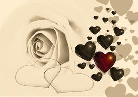 white rose and different heart