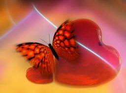 orange butterfly on a blurry red heart