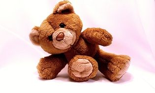 teddy bear, cute soft toy