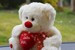 white teddy bear with red heart