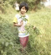 asian child girl with green plants in hands