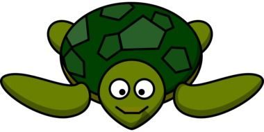 turtle happy animal drawing