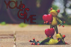 frogs pair in love