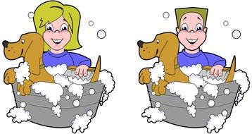 bathing dogs on a colorful picture