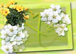 painted flowers on a green postcard for Easter