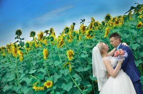 wedding in sunflower field