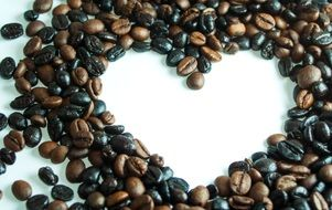coffee beans heart drawing