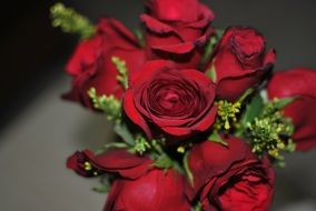 stylish bouquet of burgundy roses