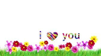 inscription i love you over a flower meadow