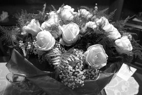 roses flowers black and white foto