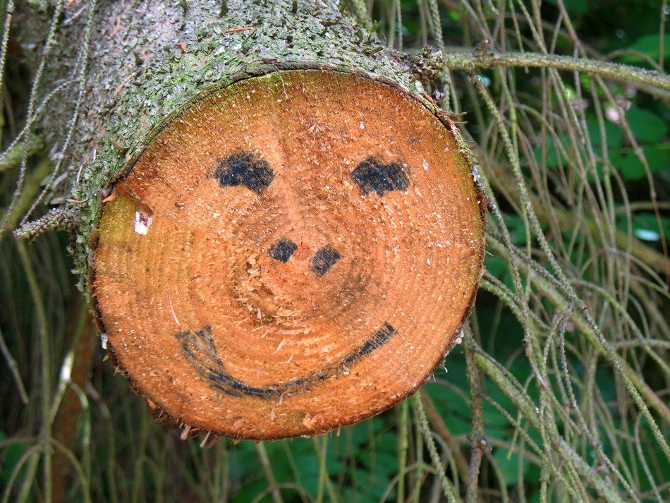 wood face happiness drawing
