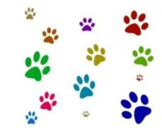 Bear Paw Print Clip Art drawing
