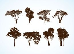 Free Tree Vector drawing