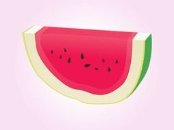 Watermelon slice vector drawing