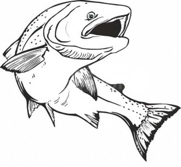 Disegni pesci da colorare e stampare free image for Disegni di pesci da stampare e colorare