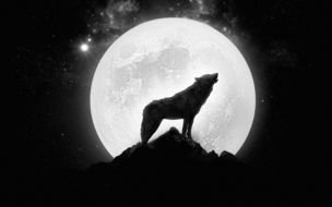 drawing of Wolf Howling At Full Moon