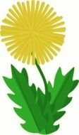 yellow dandelion as a graphic illustration