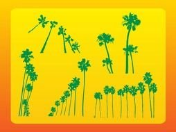 different palm trees as a graphic illustration
