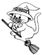 cat on a witch\'s broom