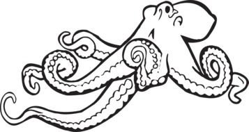 painted octopus in coloring book