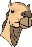 Camel Face Clip Art drawing