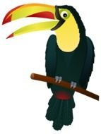 drawn toucan with a large beak