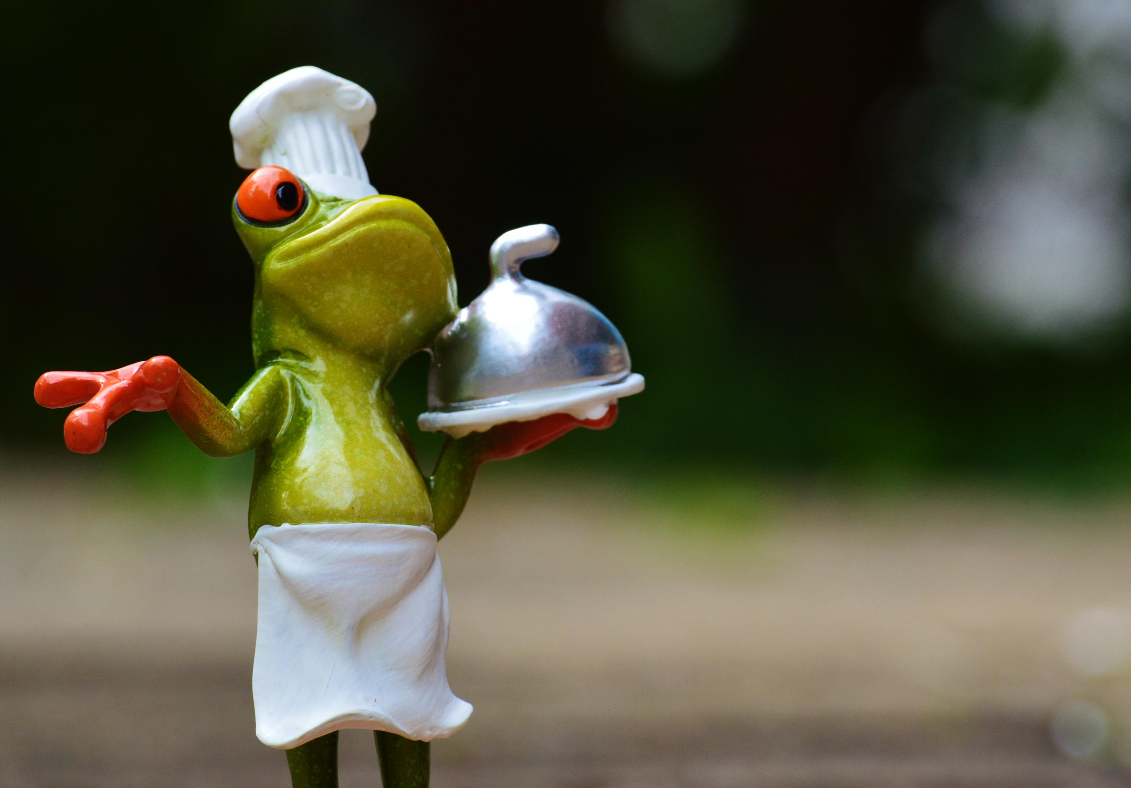 Chef frog lick — img 13