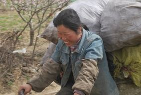 chinese woman is working