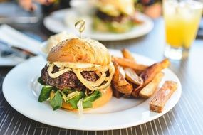 delicious homemade burger with fries
