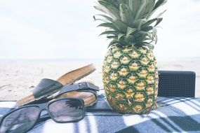 pineapple for picnic on a beach