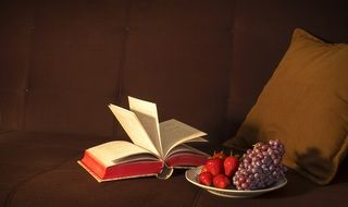 grapes strawberries a book and a pillow on a soft couch