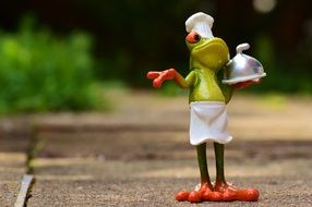 funny frog Chef cooking eat