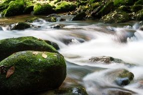 river stream and shore stones covered with moss