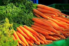 fresh and juicy carrots vegetables