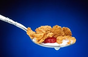 cereal and strawberry on a spoon