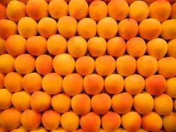 A lot of apricots in a market