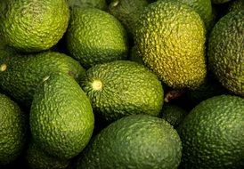 hass avocado avocados fruit green