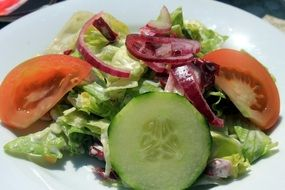 green salad on a plate