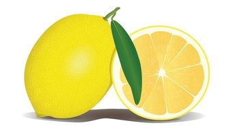 Clipart of lemons