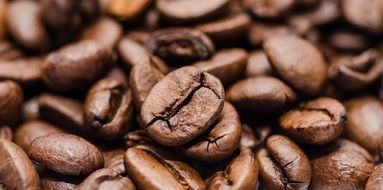 aromatic natural coffee beans