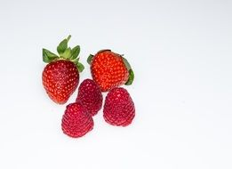 fresh red sweet strawberry fruit