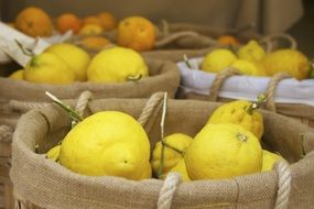 yellow lemons market fruit