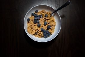 dry breakfast with blueberries in a bowl