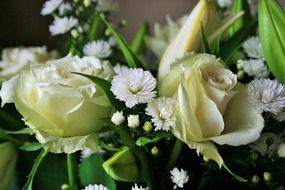 white roses, daisies and lilies in a bouquet
