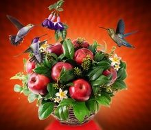tropical birds with fruits buqet