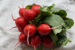 radishes red vegetables healthy food